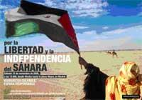 Manifestación 15 noviembre por la libertad del pueblo saharaui