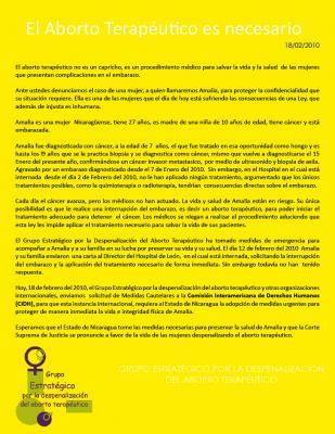 El Estado nicaragüense tiene la obligación de salvar a Amalia