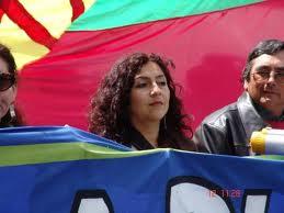 """""""Newen Mapuche"""""""