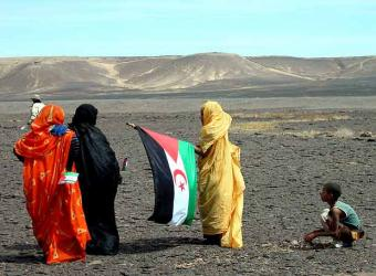 Activismo Feminista en el Sahara Occidental